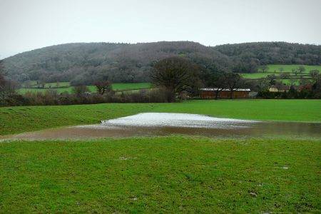 Working with natural processes to reduce flood risk