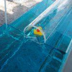 JBA stunt duck