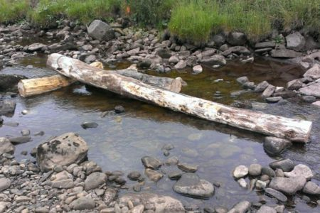 Salmonid and macroinvertebrate responses to engineered large wooded debris structures in a low gradient UK upland stream