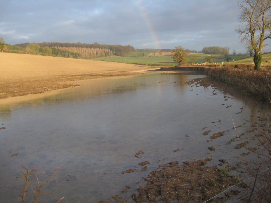 Assendon Stream at its source