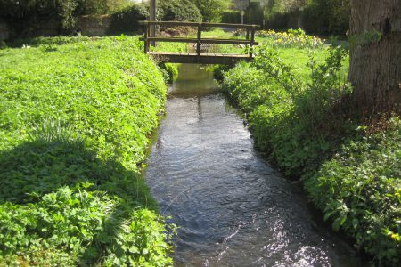 Emergence of an ephemeral chalk stream in 2014 at Assendon, Oxfordshire
