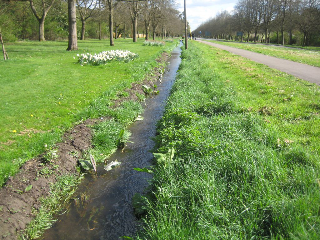 Assendon stream making its way to Henley-on Thames in April 2014