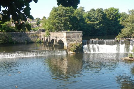 Training day for 'Healthy Weirs' volunteers