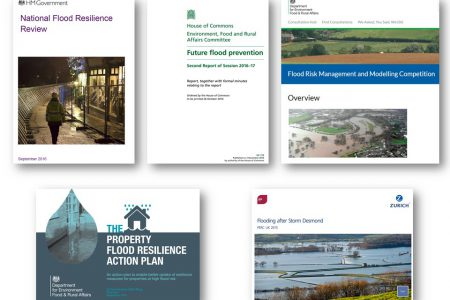 Flood resilience in a changing environment: what do recent reviews tell us?